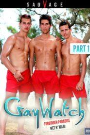Gaywatch 1