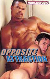 Opposite Attraction 1