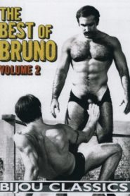 The Best of Bruno 2