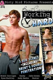 Brent Corrigans Working Hard