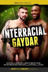 Interracial Gaydar