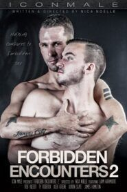 Forbidden Encounters 2