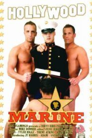 Hollywood Marine