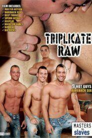 Triplicate Raw