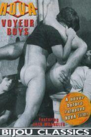 Voyeur Boys aka Eyes of a Gay Stranger