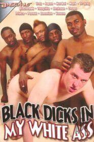 Black Dicks in My White Ass