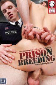 Prison Breeding