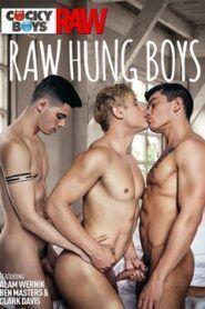 Raw Hung Boys