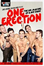 One Erection The Un-Making of a Boy Band