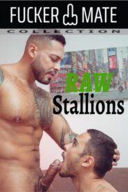 Raw Stallions