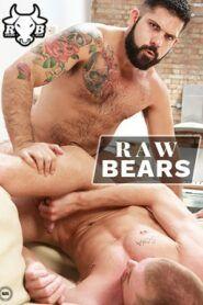 Raw Bears