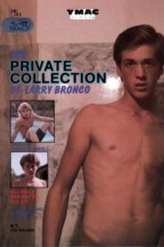 The Private Collection of Larry Bronco