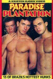 Paradise Plantation
