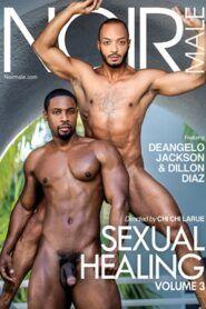 Sexual Healing 3