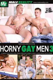 Horny Gay Men 3