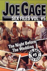 Joe Gage Sex Files 05 The Night Before the Wedding