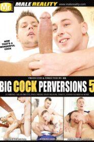 Big Cock Perversions 5