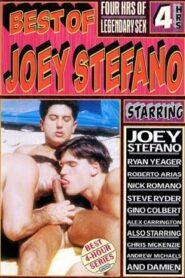 The Best of Joey Stefano (Vivid)