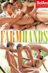Farm Hands (BelAmi)