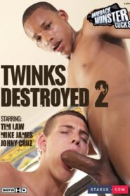 Twinks Destroyed 2