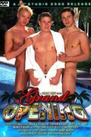 Grand Opening (Studio2000)