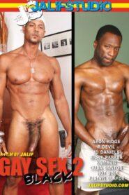 Gay Sex 2 Black