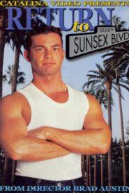 Return To Sunsex Blvd