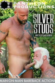 Silver Studs