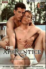 The Apprentice 1