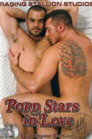 Porn Stars in Love (DVD 1)