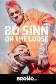 Bo Sinn On the Loose