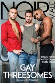 Gay Threesomes (Noir)